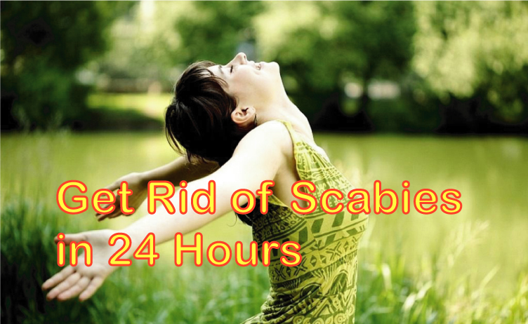 get rid of scabies in 24 hours