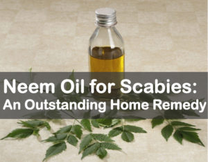 neem oil for scabies